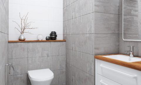 F1_loft_restroom