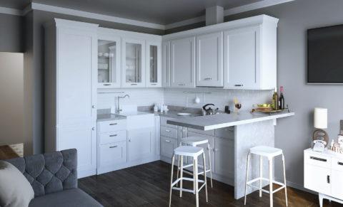 F1_modern classic_kitchen