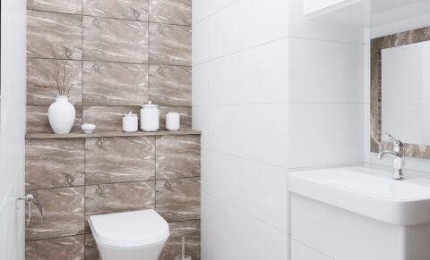 F1_modern classic_restroom